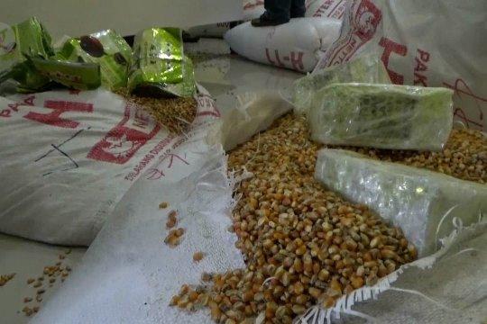 BNN gagalkan penyelundupan sabu-sabu di dalam karung jagung