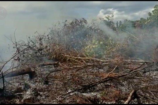 Petugas padamkan kebakaran lahan gambut di Palangka Raya