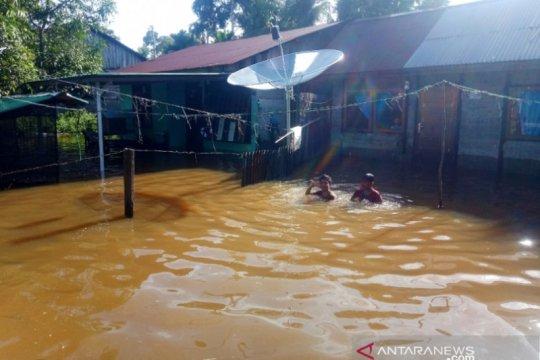 Ratusan warga di Aceh Barat masih terkurung banjir setinggi satu meter