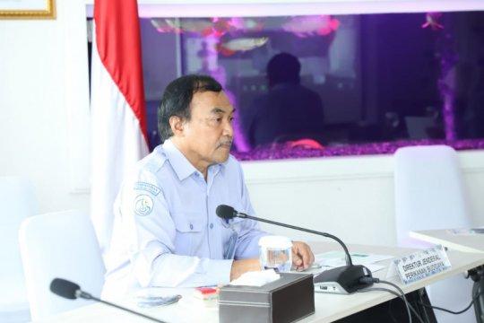 KKP: Program irigasi tambak partisipatif bantu pemulihan ekonomi