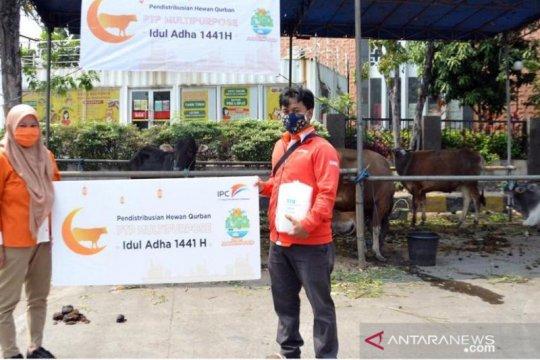 Pelindo II salurkan 315 hewan kurban