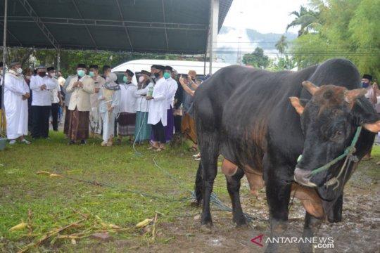 Wakil Bupati Bone Bolango mengapresiasi sapi kurban dari Presiden