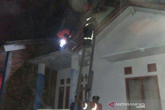 Animal Rescue Garut evakuasi sarang tawon karena bahayakan warga