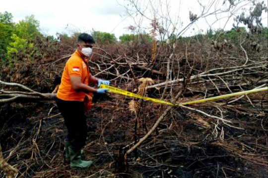 Polisi selidiki kebakaran hutan-lahan di Palangka Raya