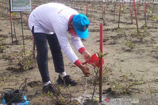 18 persen dari 3 juta ha hutan bakau di Indonesia rusak, sebut KLHK