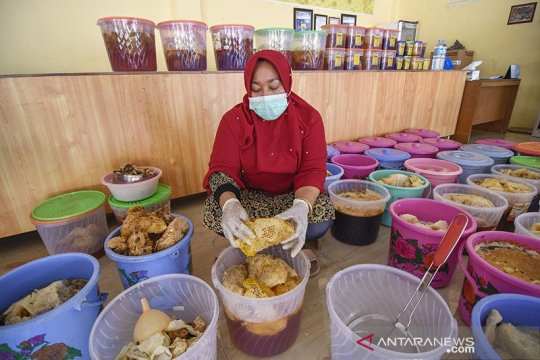 Program PEN lindungi kemampuan ekonomi pelaku usaha, kata Anggota DPR
