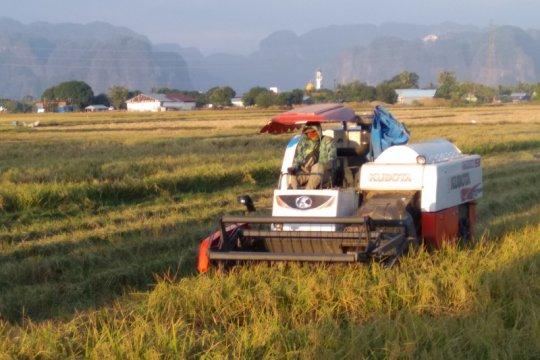 Akademisi: Kembangkan teknologi pertanian, dongkrak regenerasi petani