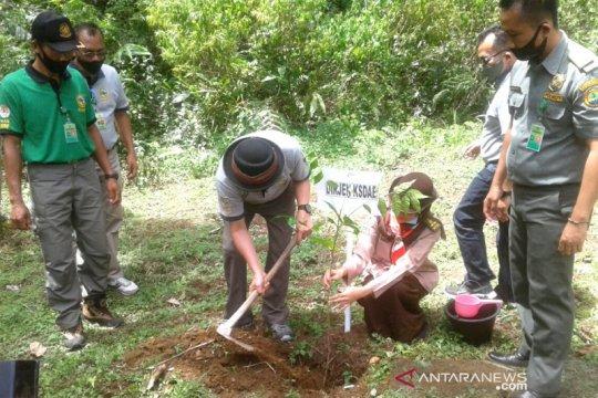 Dirjen KSDAE : Pembukaan TWA Bukit Kaba dilakukan pada fase kedua