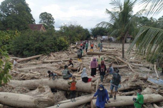 Sulawesi Selatan perlu 1.000 polisi hutan jaga kawasan dari pembalakan