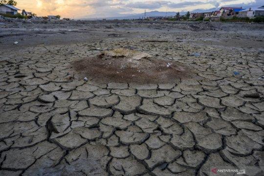 Produksi garam tahun 2020 diprediksi menurun