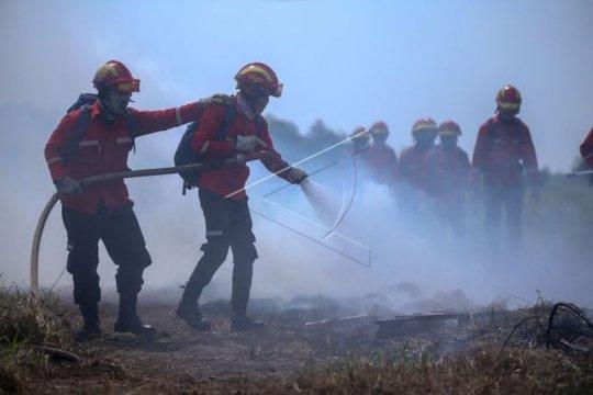 Sumatera Selatan andalkan kolaborasi multipihak cegah karhutla