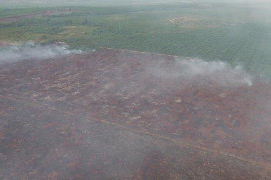 KLHK: Kasus kebakaran hutan-lahan PT IGP segera ke pengadilan