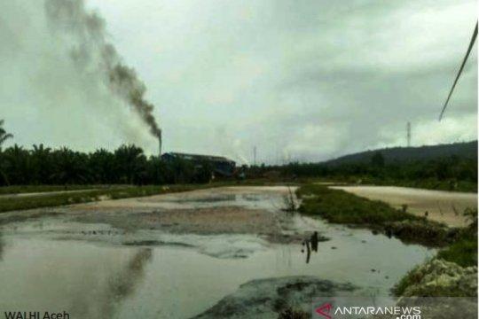 Walhi desak KLH Aceh usut pencemaran limbah perusahaan kelapa sawit