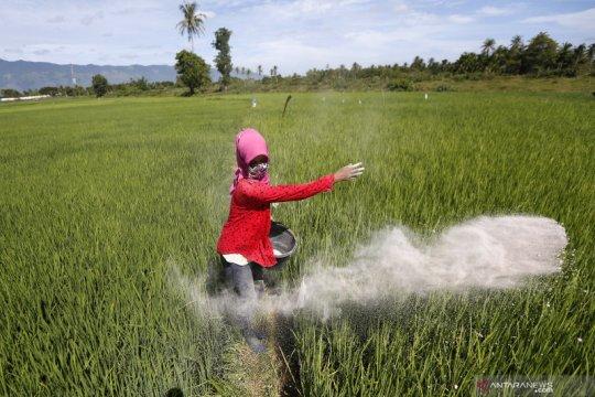 Mantan Dirut RNI diangkat jadi direktur Pupuk Indonesia