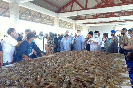 Menteri Edhy: Pemerintah beri kemudahan izin perusahaan tambak udang