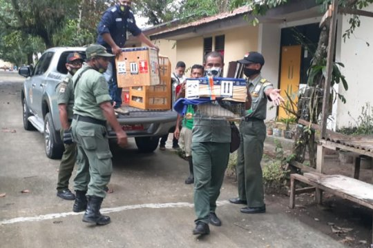 Ratusan satwa sitaan dikembalikan ke habitat di Maluku