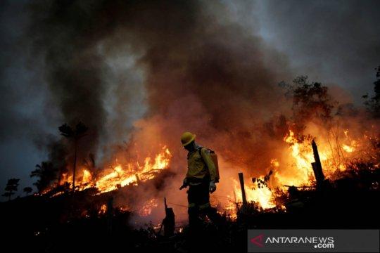 Brazil butuh bantuan Rp145 triliun setahun untuk netralitas karbon