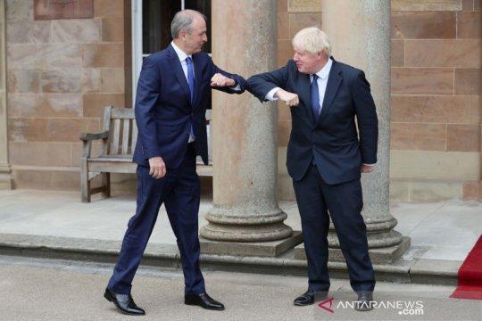 PM Irlandia: Biden inginkan perjanjian Brexit dengan Uni Eropa