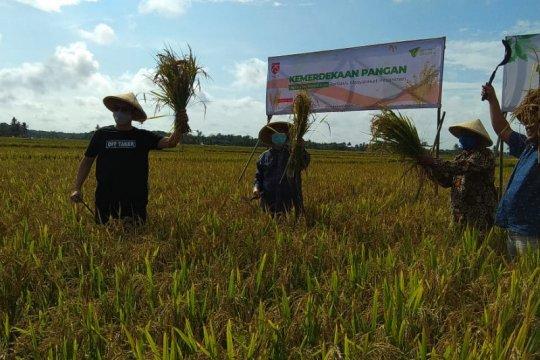 Dompet Dhuafa akan kembangkan pertanian berbasis pesantren 1.000 ha