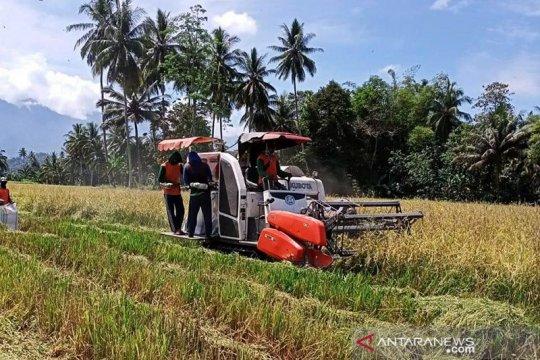 Kinerja pertanian perlu lebih ditopang modernisasi teknologi