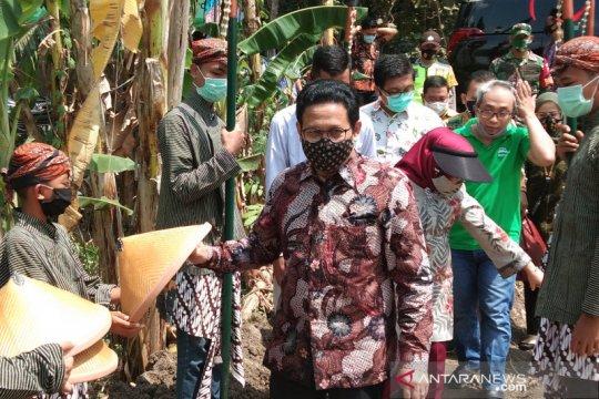 Menteri Desa dorong penguatan ketahanan pangan dari desa