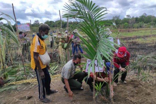 Tingkatkan ketahanan pangan, investasi pertanian harus digenjot
