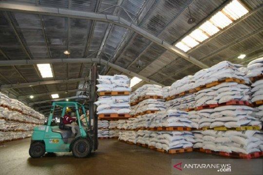 Pupuk Kaltim kembangkan PreciPalm, teknologi pertanian kelapa sawit