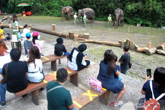 Wisatawan kunjungi Taman Safari Indonesia di Cisarua