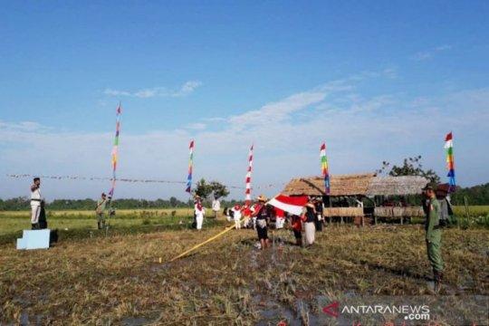 Petani pesisir Kotim peringati HUT Kemerdekaan di tengah sawah