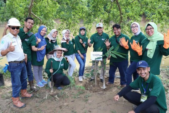 YABN bantu tangani lahan kritis melalui penanaman pohon bambu