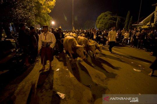 Pura Mangkunegaran Surakarta tiadakan Kirab Malam Satu Sura