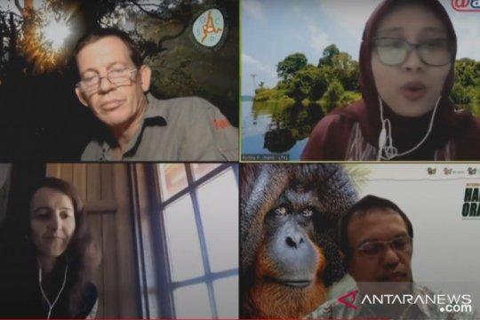 Hari Orangutan Sedunia, konservasionis serukan pencegahan karhutla