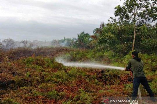 Enam hektare lahan gambut di Aceh Barat terbakar