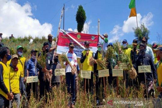 Kementan targetkan Indonesia swasembada bawang putih pada 2024