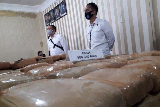 BNNP Lampung tangkap empat tersangka pengedar 200 paket besar ganja