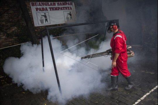 Tujuh warga Jakarta Utara terserang DBD