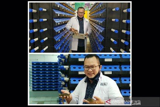 Rektor IPB : Teknik apartemen kepiting 4.0 memiliki efisiensi tinggi