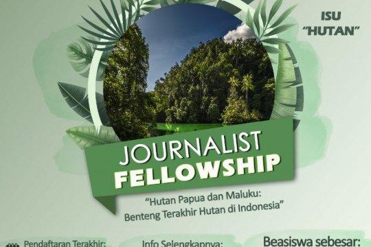 Yayasan EcoNusa luncurkan program bantuan liputan isu hutan Papua