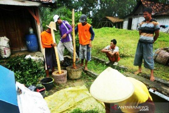 Peluang pasar pestisida nabati terbuka lebar di Indonesia
