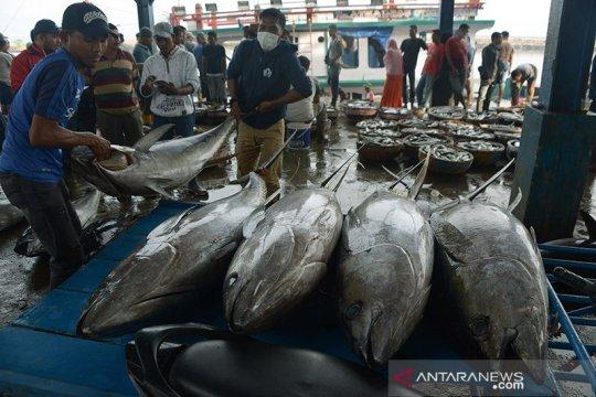 KKP: Capaian PNBP perikanan tangkap tahun 2020 lampaui 2019