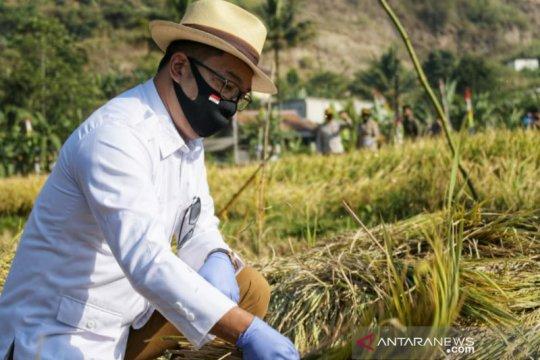 Ridwan Kamil: Metode jamu organik Biogro perkuat ketahanan pangan