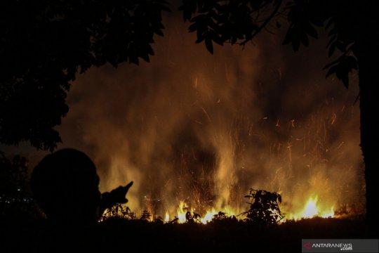 Sarwono ungkap penanganan kebakaran hutan saat ini jauh lebih baik
