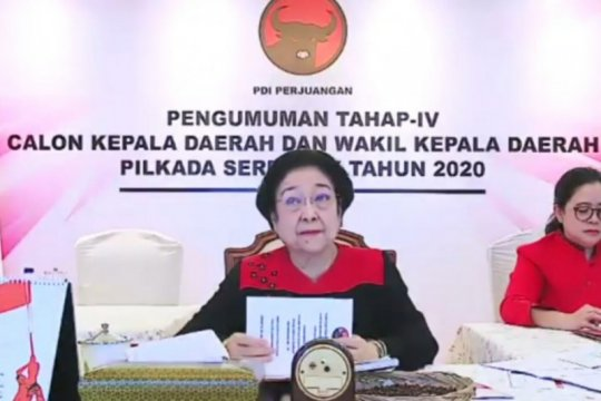 PDI Perjuangan usung petahana dalam Pilkada Karimun 2020
