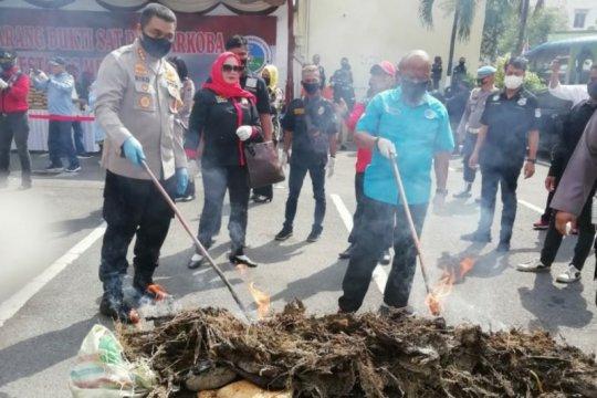 Polrestabes Medan musnahkan barang bukti ganja 358 kg