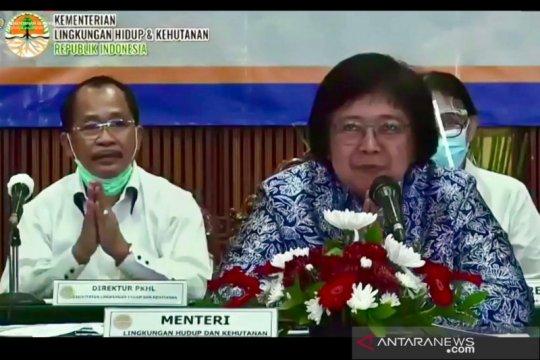 Dana-dana pengendalian perubahan iklim Indonesia
