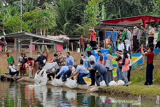 KKP: Perikanan merupakan sektor yang bernilai positif saat pandemi