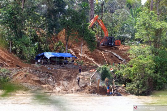 Aktivitas penambangan emas ilegal marak di Aceh Barat