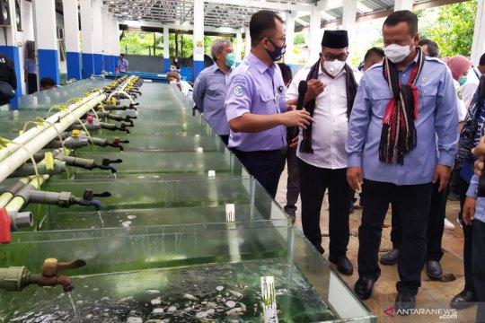 Edhy Prabowo tantang Pemda di Maluku kembangkan tambak udang