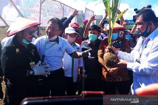 Mentan Syahrul galakkan kawasan korporasi perkuat sektor pertanian