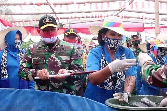 KSAL gelar panen raya ketahanan pangan di Tangerang